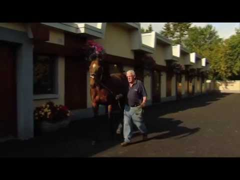 #DubaiRacing- Inside The Irish National Stud