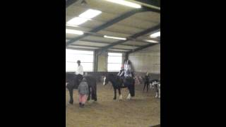 Me cantering on sky Xxx
