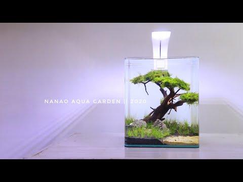 amazing-mini-bonsai-in-nano-aquascape---aquascape-mini-tema-bonsai