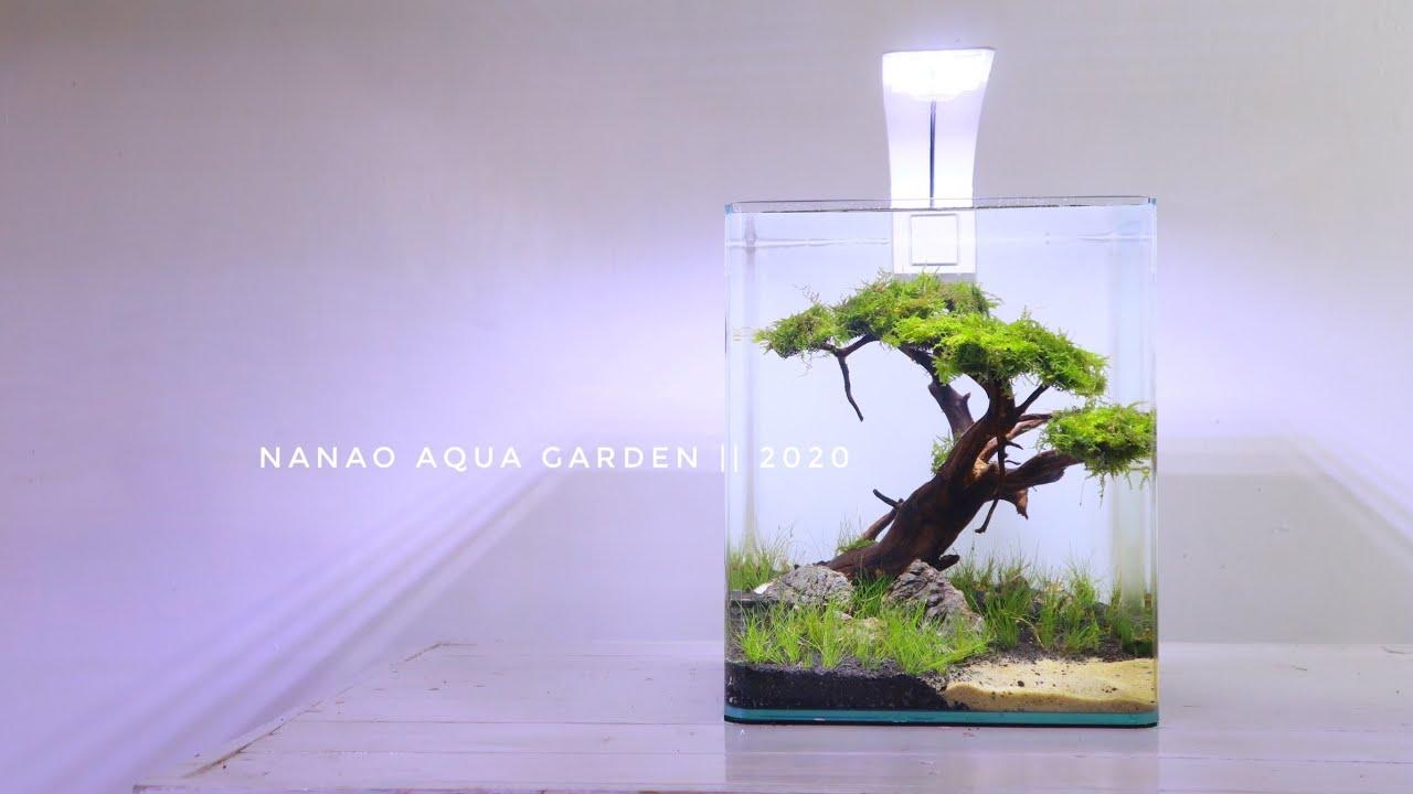 Amazing Mini Bonsai In Nano Aquascape Aquascape Mini Tema Bonsai Youtube