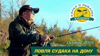 Ловля судака на Дону. Октябрь 2016.