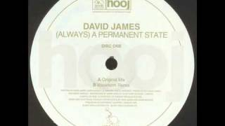 DAVID JAMES - A Permanent State