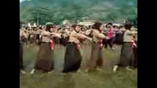 Download Mp3 Video Senam Pinguin