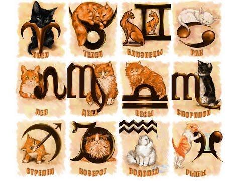 Январь - гороскоп рождения