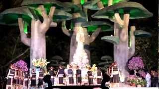 Đêm Hoa Đăng dâng Mẹ Maria tại Linh Địa La Vang ( 14-08-2012 )