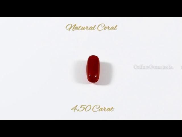 NATURAL RED CORAL (ITALIAN ) 4.50 CARAT