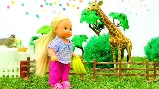 Семья Барби едет в зоопарк - Штеффи кормит животных