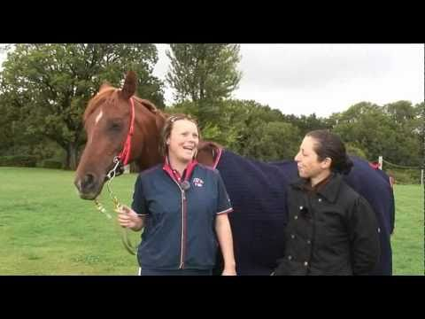 Endurance Squad Training WEG 2010: Part 2 TRAILER