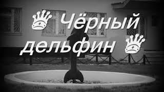 Фонтанчик с черным Дельфином 🐬