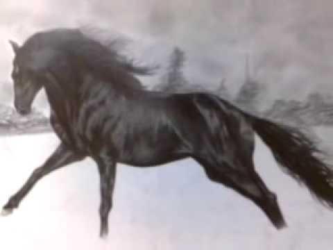 Disegno cavallo a matita fra1 youtube for Disegno cavallo stilizzato