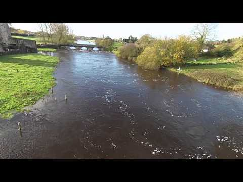 Boyne River, Newtown Abbey, Trim, Ireland