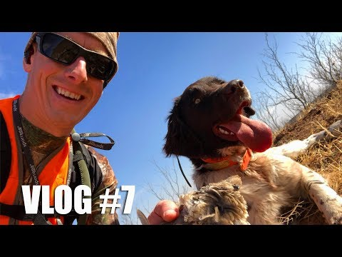 Quail Hunting Road Trip First Stop 👉 Texas 🌵 Gould Brothers VLOG