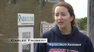 Inclusive Post-Secondary Education (IPSE) - Lethbridge College