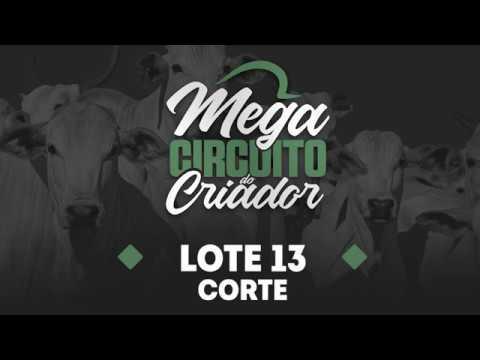 CORTE LOTE 13
