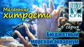Бюджетный морской аквариум. 4 Серия.(Видео рассказывает о тонкостях организации освещения аквариума и использования сорбентов., 2017-01-24T13:54:32.000Z)
