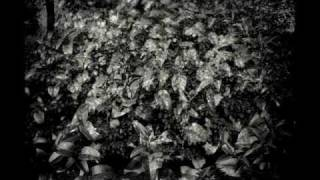 J.S.Bach - Arie No.47- Erbarme Dich