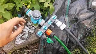 System nawadniania kropelkowego - warto kupić? test, o montażu