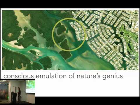 Design Night: Mother Nature - Biomimicry with Dr. Dayna Baumeister