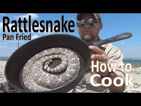 Chase Matthews - WATCH: Snake Bite Victim Shows How To Deep Pan Fry A Rattlesnake