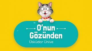7 Şubat Dünya Kediler Günü kutlu olsun 😽