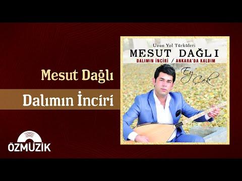 Dalımın İnciri - Mesut Dağlı (Official Video) indir