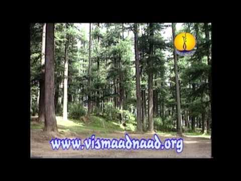 AGSS 1997 : Raag Nat : Siromani Ragi - Bhai Balbir Singh Ji Amritsar
