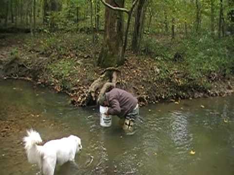 Arrowhead hunting in georgia