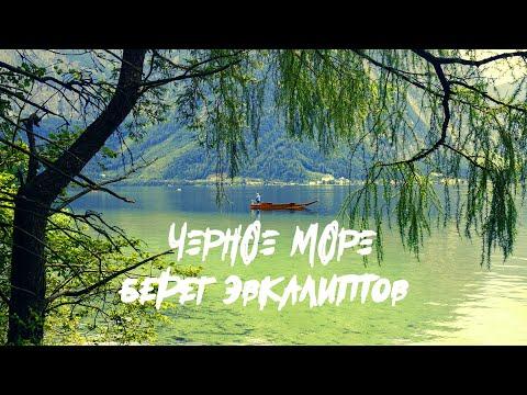 Черное Море - Берег эвкалиптов (Live)
