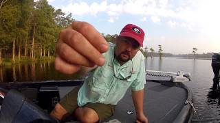 Fishing for Beginners - Snaps and Swivels