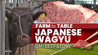 Japanese Wagyu Farm to Table | Omi Beef Story ★ ONLY in JAPAN