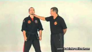 Kyusho Jitsu. Kyusho Top 10 points