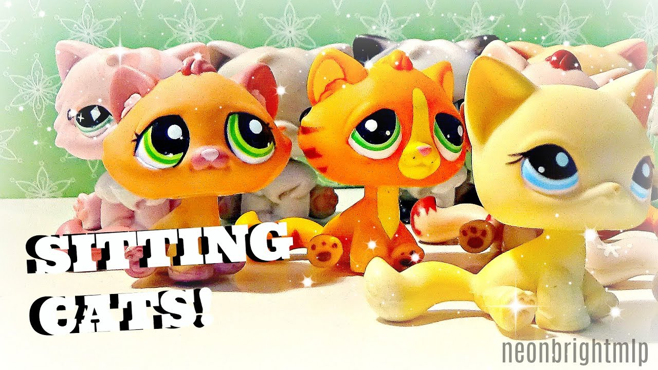Lps All Of My Sitting Cats 2017 Neonbrightmlp Youtube