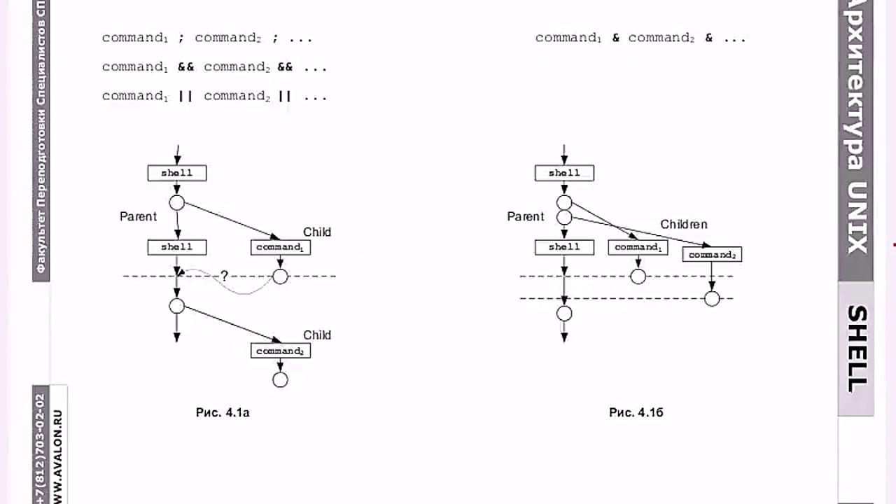 Программирование на bash в Linux