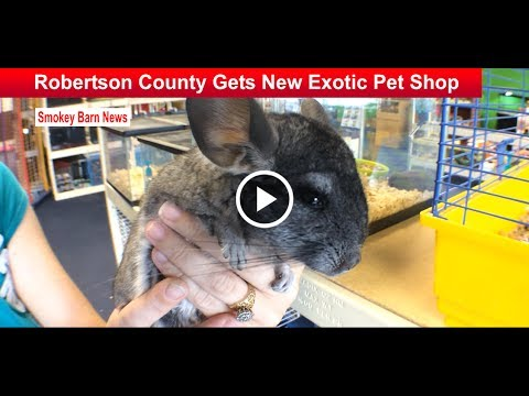 Robertson County Gets New Exotic Pet Shop