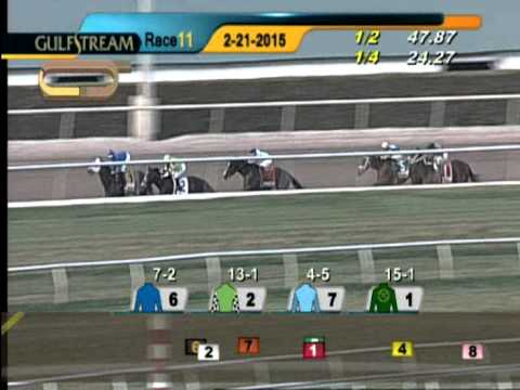 Gulfstream Park Race 11 Fountain of Youth G2  February 21, 2015