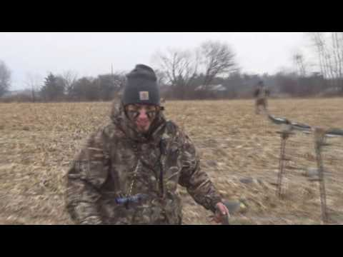 2016 Ohio cornfield duck hunt