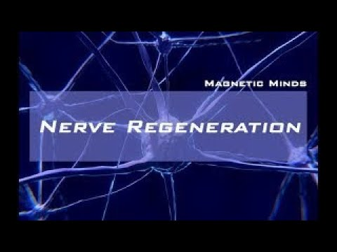 Nerve Regeneration Repair Nerve Damage and Activate Growth Healing Binaural Beats