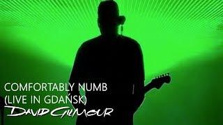 David Gilmour - Comfortably Numb (Live In Gdańsk)