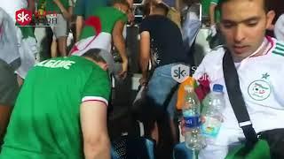 جماهير الجزائر تنظف المدرجات بعد الفوز على السنغال