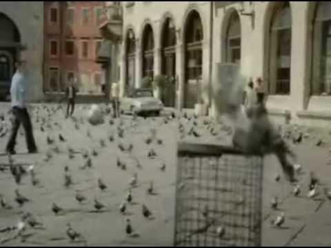 Смешная реклама (подборка 3) www.mwcom.ru
