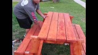 Picnic Table/bench Combo.