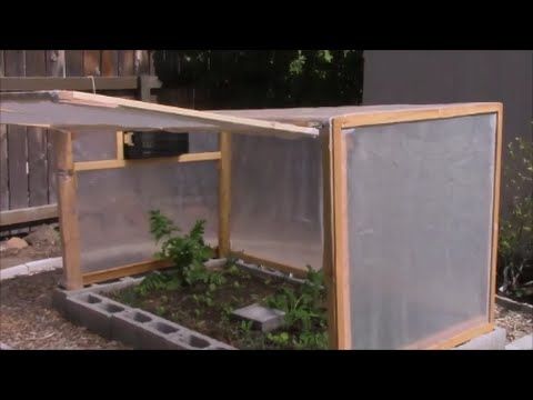 Mini Backyard Greenhouse