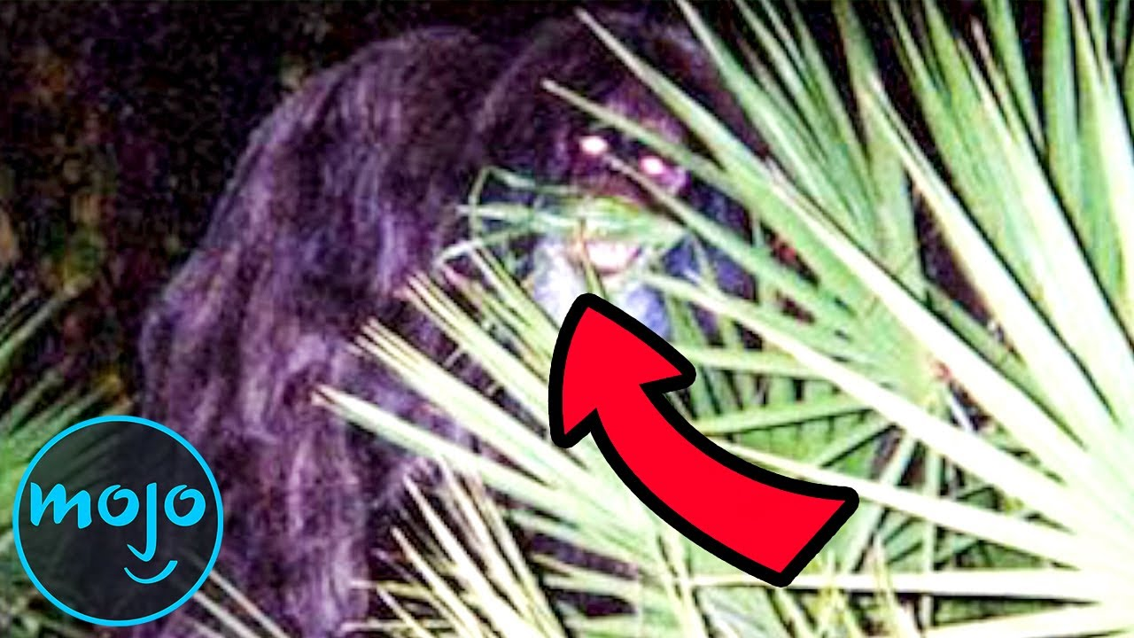 Download Top 10 Famous Real Life Monsters Caught on Camera