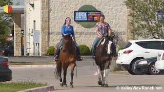 DDD Poco My Tivio (Dakota) and Storm Warning (Stormy) - riding in town - Valley View Ranch