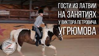 Гости из Латвии. Уроки верховой езды. Выездка.
