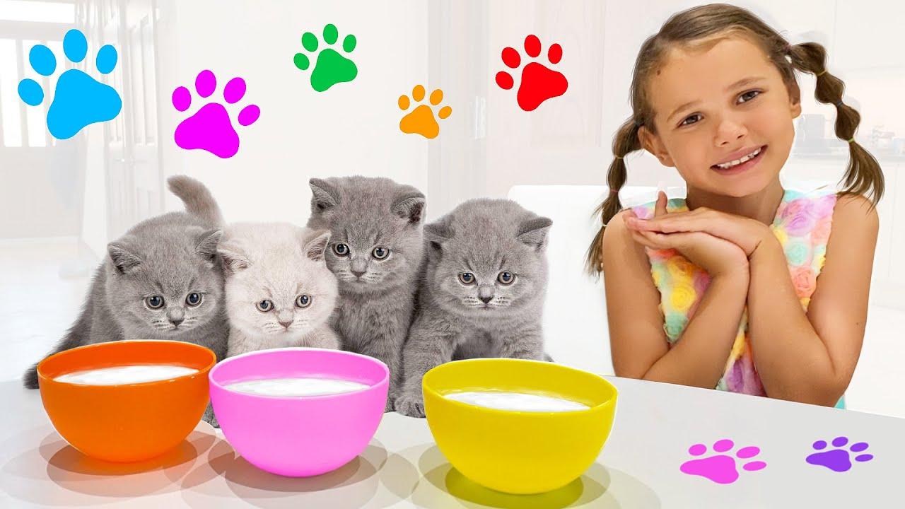 Катя и Макс играют с котятами