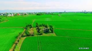 宜蘭之美綠油油稻香