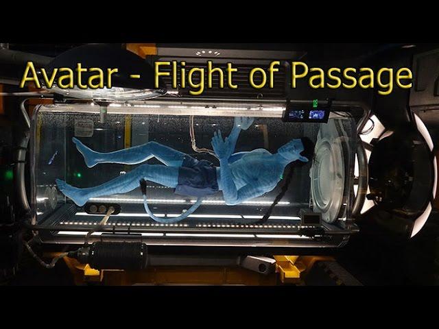 avatar-flight-of-passage-regular-queue-full-walk