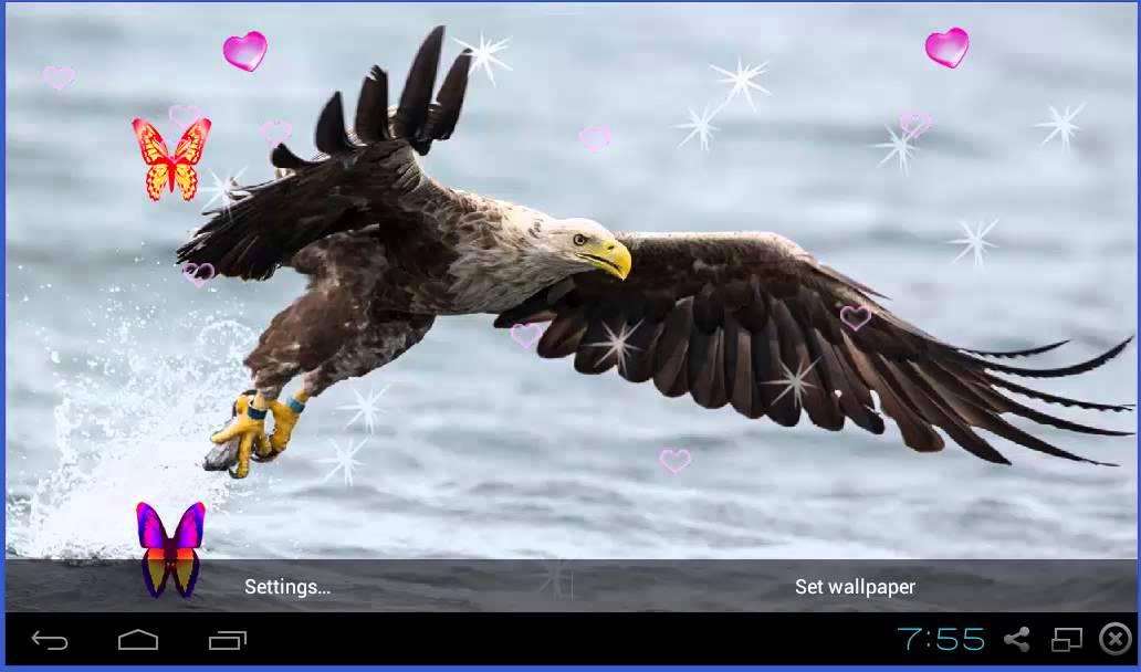 3D Eagle Live Wallpaper