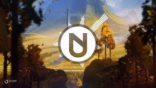 NIVIRO - Flashes